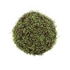 Woodland Imports Naturalistic Customary Styled Polyester Vine Grass Ball Sculpture
