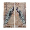 <strong>Strut Peacock Assorted Historic 2 Piece Painting Print Set</strong> by Woodland Imports