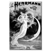 Buyenlarge Herrmann the Great Co. Vintage Advertisement on Canvas
