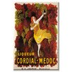 Buyenlarge Liqueur Cordial Medoc Vintage Advertisement on Canvas