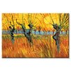 Buyenlarge 'Pollard Willows at Sunset' Painting Print on Canvas