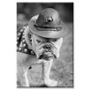 <strong>Buyenlarge</strong> 'Marine Corps Mascot Looks Like the Average Drill Instructor' Photographic Print on Canvas