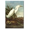 <strong>Buyenlarge</strong> 'Snowy Egret' Painting Print on Canvas