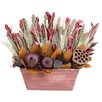 Urban Florals Autumn Pomegranate Harvest Desk Top Plant in Planter