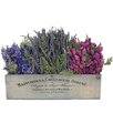 <strong>Spring / Everyday French Garden Walk Desk Top Plant in Planter</strong> by Urban Florals