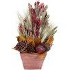 Urban Florals Autumn Pomegranate Harvest Desk Top Plant in Planter