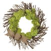 Urban Florals Spring / Everyday Urban Moss Wreath