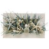 <strong>Summer St. Martin Wall Décor</strong> by Urban Florals