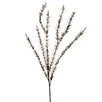 <strong>DIY Foliage Dried Herb Grass Stem (Set of 12)</strong> by Distinctive Designs