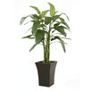 Distinctive Designs Heliconia Tree in Planter
