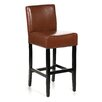 Home Loft Concept Georgia Leather Bar Stool (set of 2) (Set of 2)