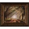 Ashton Wall Décor LLC Evergreen Plantation Small Framed Photographic Print