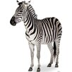 <strong>Zebra Cardboard Stand-Up</strong> by Room Magic