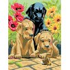 <strong>Royal & Langnickel</strong> Painting by Numbers Small Labrador Pups Junior Set