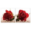 Artistic Bliss Roses 2 Piece Framed Photographic Prints Set