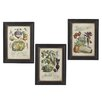 CBK 3 Piece Vegetable Framed Graphic Art Set (Set of 3)