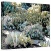 Art Wall 'Desert Botanical Garden' by Linda Parker Photographic Print on Canvas