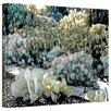 Linda Parker 'Desert Botanical Garden' Gallery-Wrapped Canvas Wall Art