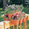 Bloem Milano 16 Piece Oval Rail Planter Set