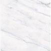 "Faber Carrara 12"" x 12"" Porcelain Matte Tile in White"