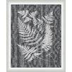 Melissa Van Hise Buckler Ferns Framed Graphic Art