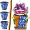 Kimco Products Flower Pot Sox (Set of 3)