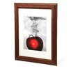 """Trademark Fine Art """"Red Apple Splash"""" by Roderick Stevens Matted Framed Painting Print"""