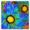 "Trademark Fine Art ""Pop Daisies IV"" by Amy Vangsgard Painting Print on Canvas"