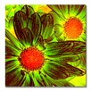 "<strong>""Pop Daisies V"" by Amy Vangsgard Painting Print on Canvas</strong> by Trademark Fine Art"