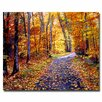 "Trademark Fine Art ""Leaf Covered Road"" by David Lloyd Glover Painting Print on Canvas"