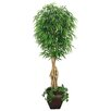 Laura Ashley Home Realistic Willow Ficus Tree in Planter
