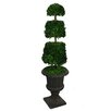 <strong>Laura Ashley Home</strong> Tall Preserved Spiral Boxwood Cone Topiary in Urn
