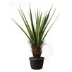 <strong>Laura Ashley Home</strong> Tall High End Realistic Silk Giant Agave Floor Plant in Planter