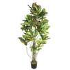 <strong>Laura Ashley Home</strong> Croton Multiple Trunks Tree in Pot