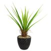 Laura Ashley Home Tall Agave Floor Plant in Fiberstone Pot