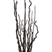 Laura Ashley Home Lighted Willow Branch Arrangement Floor Plant in Planter