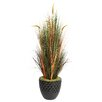 <strong>Laura Ashley Home</strong> Tall Onion Grass in Round Tapered Fiberstone Pot