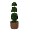 Laura Ashley Home Tall Preserved Spiral Boxwood Cone Topiary in Planter