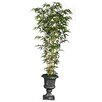 <strong>Laura Ashley Home</strong> Tall Bamboo Tree in Urn
