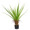 Laura Ashley Home Agave Floor Plant in Pot