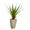 <strong>Tall Agave Floor Plant in Fiberstone Pot</strong> by Laura Ashley Home
