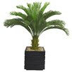 <strong>Laura Ashley Home</strong> Tall Cycas Palm Floor Tree in Planter