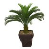 Laura Ashley Home Tall Cycas Palm Tree in Planter