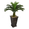 <strong>Laura Ashley Home</strong> Tall Cycas Palm Tree in Planter