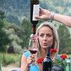 Soiree Soiree Wine Aerator