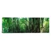 <strong>iCanvasArt</strong> Panoramic Bamboo Forest, Chiang Mai, Thailand Photographic Print on Canvas