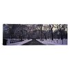 <strong>Panoramic Bare Trees in a Park, New York City Photographic Print on...</strong> by iCanvasArt