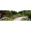 iCanvas Panoramic Bench in a Garden, Olbrich Botanical Gardens, Madison, Wisconsin Photographic Print on Canvas