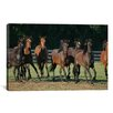 iCanvasArt 'Brown Horses Running' by Bob Langrish Photographic Print on Canvas