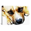 <strong>iCanvasArt</strong> 'Bull Terrier Eyes' by Michael Tompsett Photographic Print on Canvas